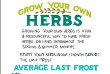 Organic Growing Tips & Tricks