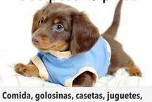 Productos > Mascotas / Ofertas para Mascotas