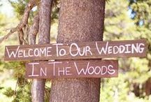 Ideas from my dream wedding in the woods
