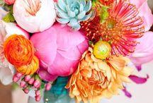 Blommor och planteringar