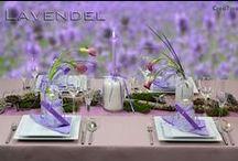"""Tischdeko - Paket Lavendel / Lavendelduft ist in der Luft. Mit unserer Tischdeko """"Lavendel"""" bringen Sie Farbe auf Ihren Tisch. Tischdeko - Paket """"Lavendel"""". Farbenfrohe Deko für Ihre Feier Zuhause oder im Lokal. Wir liefern Ihnen gut verpackt Ihre Deko bequem nach Hause. Mit unserer Deko - Anleitung verwandeln Sie im Handumdrehen Ihren Tisch zum optischen Leckerbissen."""