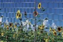 Kunststof hekwerkbekleding (landschappen, overig) / Voor optimale privacy in uw (achter)tuin of rondom uw bedrijf, heeft DHW ZichtDicht voor u de oplossing. Onze hekwerkbekleding is eenvoudig te monteren in bestaand of nieuw dubbelstaafmat hekwerk en door de keuze uit ruim 50 kleuren/designs, heeft u een passende metamorfose waar u jarenlang plezier van heeft. KENMERKEN * Onderhoudsvrij * Weerbestendig * UV-bestendig * Duurzaam * Bescherming tegen wind * Optimale privacy * Verzorgde uitstraling * Direct resultaat *