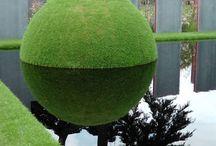 Tuinen wereldwijd / ZICHTDICHT, EEN ANDERE KIJK OP UW TUIN: een ware metamorfose is nu binnen handbereik