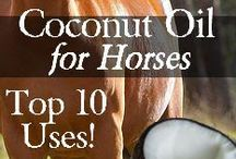 Natural Horse Remedies / Remedies for horses