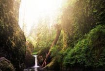 Explore the Pacific Northwest (PNW) / Hikes located in our Great Pacific Northwest.