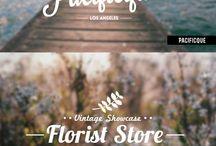 Branding | fonts | logo