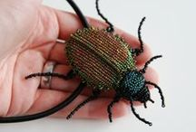 Beaded Bugs, Beetles