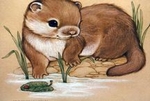 Otterly Awesome! / All things Otters! / by Cari Bishop-Smith