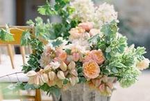Weddings | Blooms