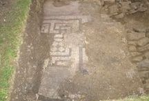 Roman Villa Excavation 2009 / Newly discovered Roman site in Somerset