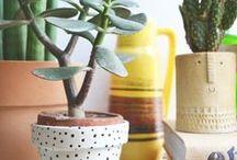 Jolis Pots / pots de fleurs #deco #vase #bacs à #plantes