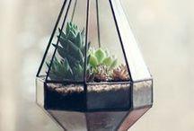 Terrarium / Longtemps oublié, le terrarium revient en force.Il apporte une jolie note de végétal dans nos intérieurs sans demander de gros efforts. Retrouvez toutes nos inspirations green.