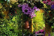 GARDENS AND LANDSCAPES / Garden and landscape forever