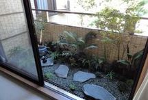 The Balcony Garden / Stuff to turn my tiny balcony into a garden!