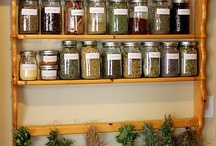 remedies / Whether it be through eating right, exercise or herbal remedies, I will always try to find the most natural way.