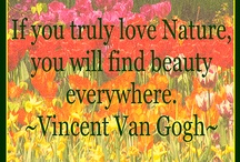 Nature Quotes / by botl quotes