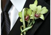 Orchids for Men / Mostly boutonnieres, mostly for weddings . . .
