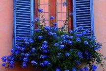 Windows / Ventanas bonitas