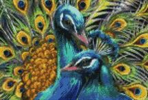 Птицы схемы крестиком
