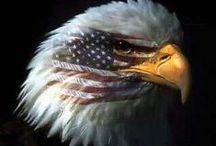 ~AMERICANA~ / by Sherry Lipscomb