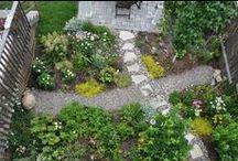 Gardening / Gardening, Gardens, Garden Inspiration, Garden Ideas, Container Gardening, Vegetable Gardens, Easy Gardens, Garden Accessories, DIY Garden Accessories