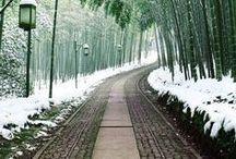 Travel | Fairytale Japan