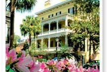 The American South / Travel ideas, sightseeing, and tips for touring the southern U.S.