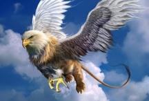Fantasy : Creature : Griffin