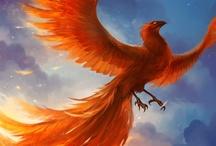 Fantasy : Creature : Phoenix