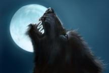 Fantasy : Creature : Werewolf