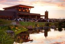 Winery Wedding / Weddings at the Waterbrook Winery