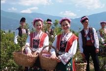 FESTIVAL / 世界各地の伝統的なお祭をご紹介します。