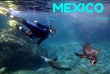 Mexico/Baja California, Sea of Cortes