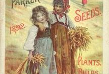seed  packets from the old days