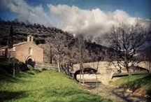 Nature, food and Umbria / what's happening in the Hotel?