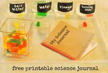 Science Fair Projects / Science fair project ideas for kids. Be the coolest entry with these awesome science experiments. Great hands-on science for kids.