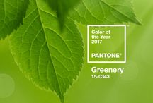 Pantone - Greenery (Colour of they Year 2017) / Pantone have named this year's colour as 'Greenery' and what a colour it is. Bold, vibrant and juicy. Bring it into your home with the inspiration know how below.