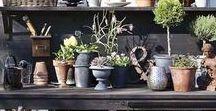 Greenhouse & garden