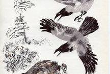 variksia - hooded crows / My favourite birds :-)