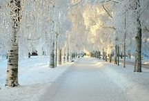 Winter wonderland / I'm a winter lover, I always were and I always be