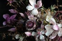 Moody Blooms / Moody blooms - rich greens, blues, maroons. Inspiration for a darker wedding bouquet