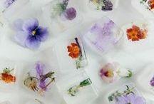 Edible Flora