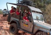 Jeep Tours of Sedona and Beyond / Take a thrilling jeep tour of the Sedona area! Incredible vistas, landscapes, flora, fauna and some bumps along the way! / by El Portal Sedona Hotel