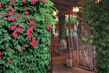 El Portal Sedona Hotel / El Portal Sedona is the spirit of the Southwestern experience, quintessential concierge services, gourmet breakfasts, intimate great room, relaxing courtyard, private patios, beautiful rooms, and all in a pet friendly Sedona hotel. We offer a different lodging experience, we are not your big hotel, nor are we your typical inn. We don't just hand you a key, we sit down with our guests and help them get the most out of their Sedona stay - this is the El Portal way! / by El Portal Sedona Hotel