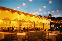 Virginia Weddings / Virginia wedding images, inspiration, ideas, details and decor.