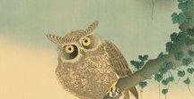 (Jp-EM) 幸野 楳嶺  Bairei  Kouno(1844 ~ 1895) / 幸野 楳嶺(Bairei Kouno(1844年弘化元年)- 1895年明治28年)江戸時代末から明治初期の日本画家。名は直豊、幼名は角三郎、字は思順、号は「楳嶺、他に鶯夢、長安堂、青龍館、六柳北圃など多数」