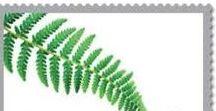 stamp1( plant / fungus/ moss)植物、キノコ / ['w'] 世界の切手・植物・キノコ・地衣類・苔・盆栽・鉢植