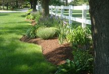 landscaping / I see pieces of a picture not the whole when it comes to landscaping. These pins are often partial likes or ideas that could work in my future gardens, yet with certain adjustments.  / by Daniel&Ariel Bomske