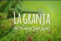La Granja / Conoce como vivimos y trabajamos en Huevo San Juan, nuestra casa.