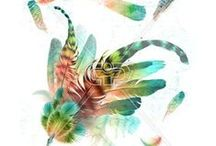 FEATHER | PRINTS / Feather print, graphic & design inspiration for printed T-Shirts & Products. #downloadt-shirtdesigns